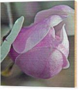 Lathrop California Wood Print