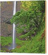 Latourell Falls Oregon Wood Print
