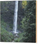 Latourelle Falls-columbia River Gorge Wood Print