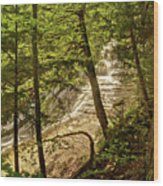 Laughing Whitefish Falls 2 Wood Print