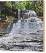 Laughing Whitefish Waterfall In Michigan Wood Print