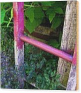 Laura's Ladder Wood Print by Jen White