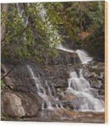 Laurel Falls Four Wood Print