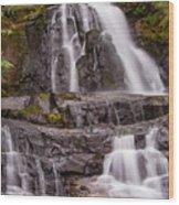 Laurel Falls Three Wood Print