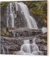 Laurel Falls Two Wood Print