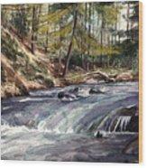 Laurel Run Wood Print