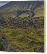 Lava Field And Mountain - Iceland Wood Print