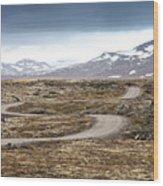 Lava Field In Iceland Wood Print