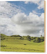 Lava Rock Cross Wood Print