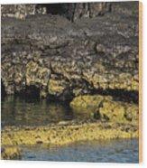 Lava Tubes Puerto Egas Wood Print