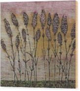 Lavandula Angustifolia II Wood Print