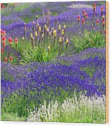 Lavender And Flowers Oh My Wood Print