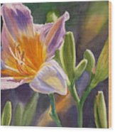 Lavender And Gold Lily Wood Print