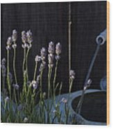 Lavender And Watering Can Wood Print