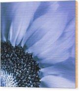 Lavender Blue Silk Wood Print