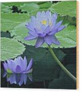 Lavender Enchantment Wood Print