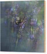Lavender Field II Wood Print