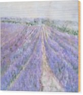 Lavender Fields Provence-france Wood Print