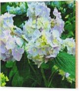 Lavender Hydrangea In Garden Wood Print