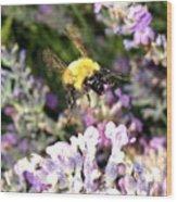 Lavender Landing Wood Print
