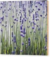 Lavender Patterns Wood Print