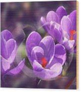 Lavender Spring Wood Print
