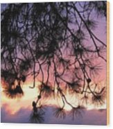 Lavender Sunset Wood Print