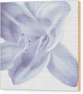 Lavender Tropic Wood Print