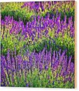 Lavenderous Harmony Wood Print