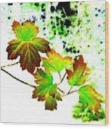 Lavish Leaves 4 Wood Print