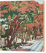Lawson Avenue Flamboyants Wood Print