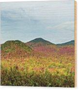 Layered Adirondack Colors Wood Print
