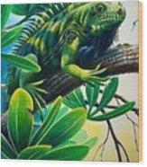 Lazin' Iguana Wood Print