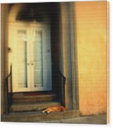 Lazy Afternoon At Kings Street In Charleston Sc Wood Print