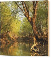 Lazy Afternoon On The Creek 2 Wood Print