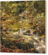 Lazy Mountain Water Fall Wood Print