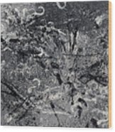 Le Chemin Wood Print
