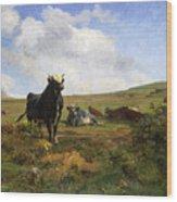 Leader Of The Herd Wood Print