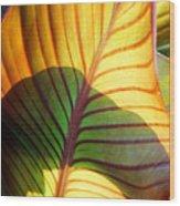 Leaf 1 Wood Print