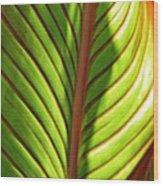 Leaf Abstract  23 Wood Print