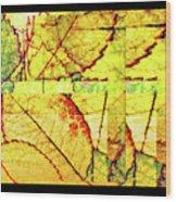 Leaf Abstract Wood Print