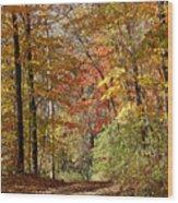 Leaf Covered Path Wood Print