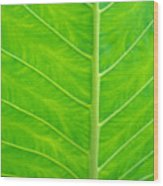 Leaf Detail Wood Print