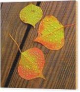 Leaf Drops 2 Wood Print
