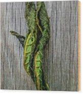 Leaf Entwined Wood Print