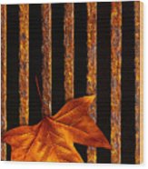 Leaf In Drain Wood Print by Carlos Caetano