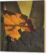 Leaf In Fork Wood Print