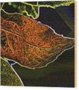 Leaf Interpretation Wood Print