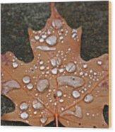 Leaf It Be Wood Print