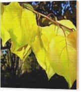 Leaf Line Wood Print